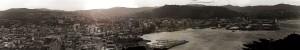 Wellington_panorama